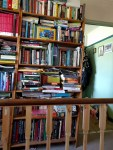 Writer's Bookshelf - Bookshelves Abound = #Shelfie 07