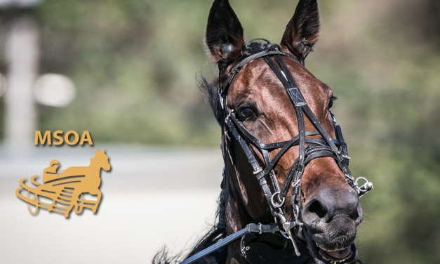 NOTICE: Revised Horse Ballot