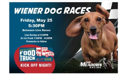 Wiener Dog Races, Fireworks set for Friday