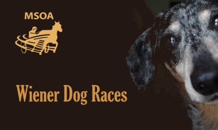Wiener Dog Races to be held August 18