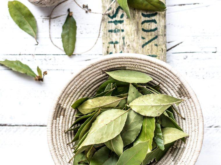 bar leaves natural anti-dandruff hair oil feature image