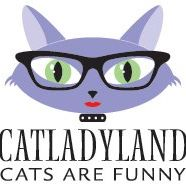 Cat Lady Land - Cute Kitty Blogs