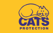 Cats Protection Blog - Cute Kitty Blogs