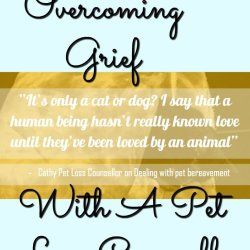 Overcoming Grief with a pet loss councellor, see what she had to say about dealing with this difficult time.