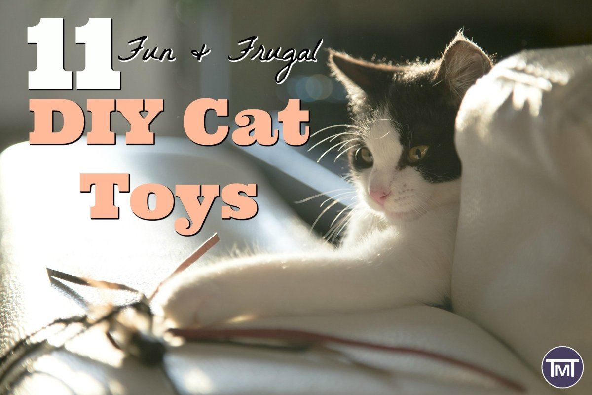 11 Fun & Frugal DIY Cat Toys