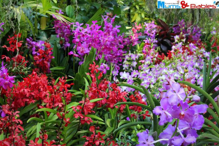 Gardenbythebay28a