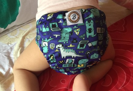 Bumpadum Stay-Dry Duet Cloth Diaper Review
