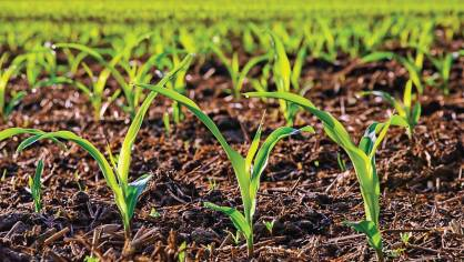 Anuvia will start producing SymTRX 16-8-0-16S, a homogenous, enhancedefficiency plant nutrient formulated specifically for agricultural markets, later in 2016. (Photo provided)