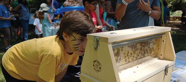 Decatur, Ga., one of the newest Bee City USA members, showcased bees during Earth Day. (Photo provided by Decatur, Ga.)