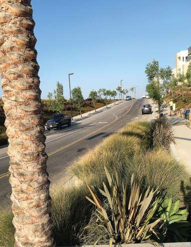 The city of Chula Vista integrates green infrastructure concepts in new development projects to reduce stormwater runoff and beautify its neighborhoods.