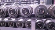 Gym Dumbbell Rack