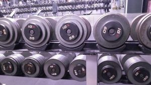 Gym Dumbbell Rack