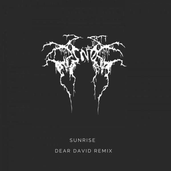 dear-david-remix