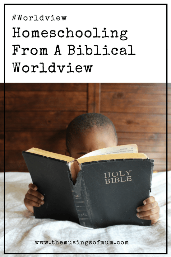 Homeschooling From A Biblical Worldview - I often get asked why we chose homeschooling from a biblical worldview, and though the reasons were many, one of them always stands out.
