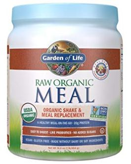Garden of Life Raw Meal Replacement (Vanilla Spiced Chai)