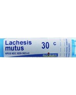 Boiron Lachesis Mutus