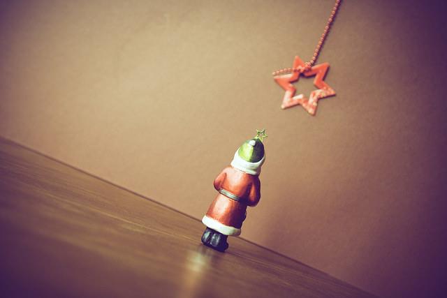 Christmas-thenakedgardiner-photo-by-MarkusSpiske