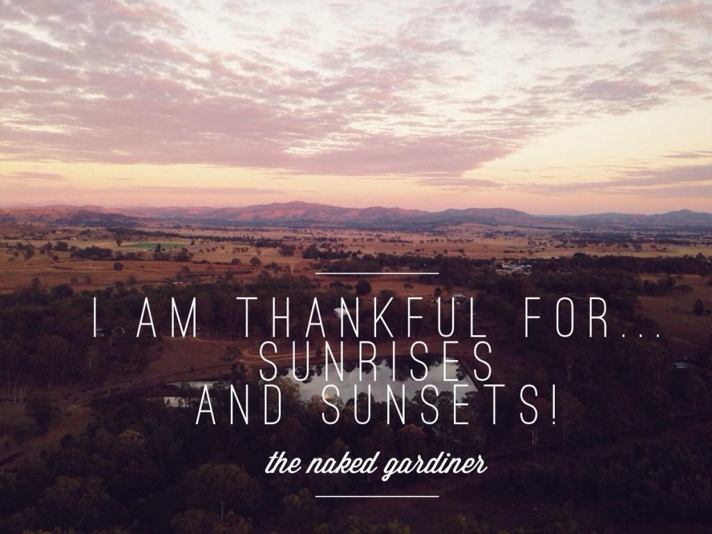 Thankful Thursday 28 August 2014