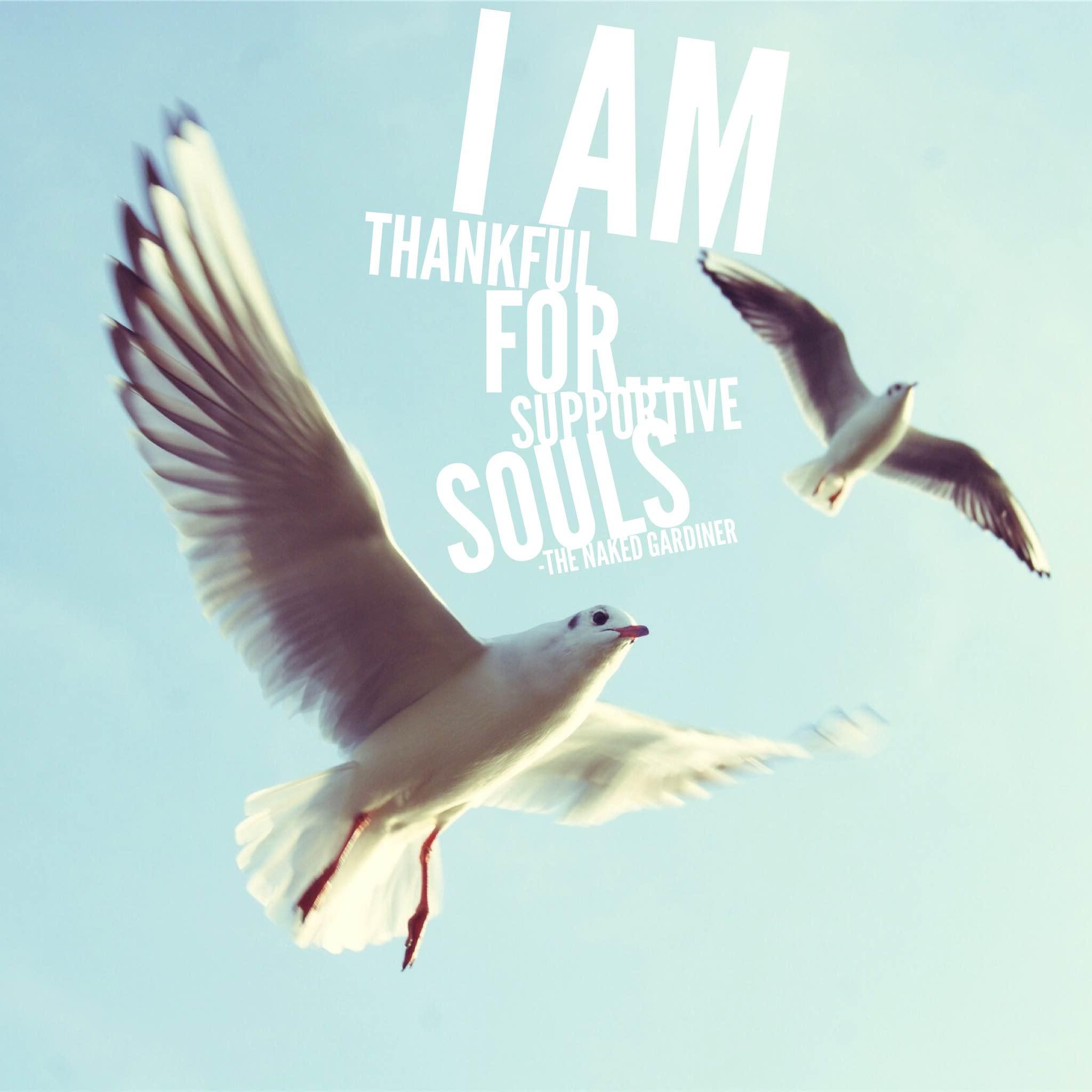 thankful-thursday-supportive-souls-thenakedgardiner