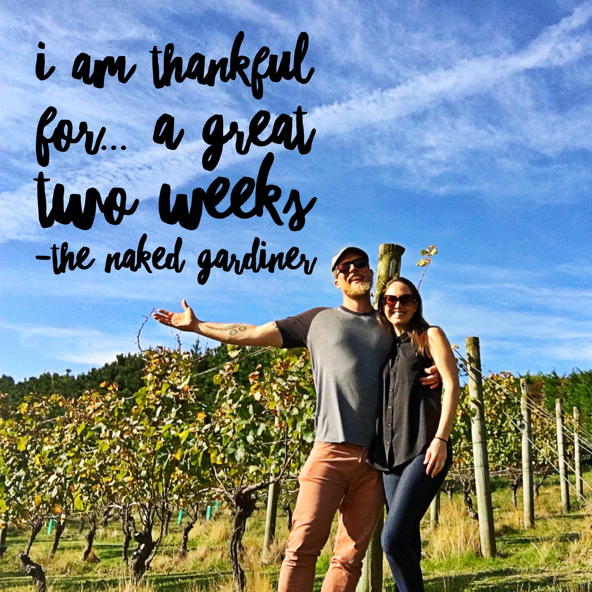 thankful-thursdays-a-great-two-weeks-the-naked-gardiner