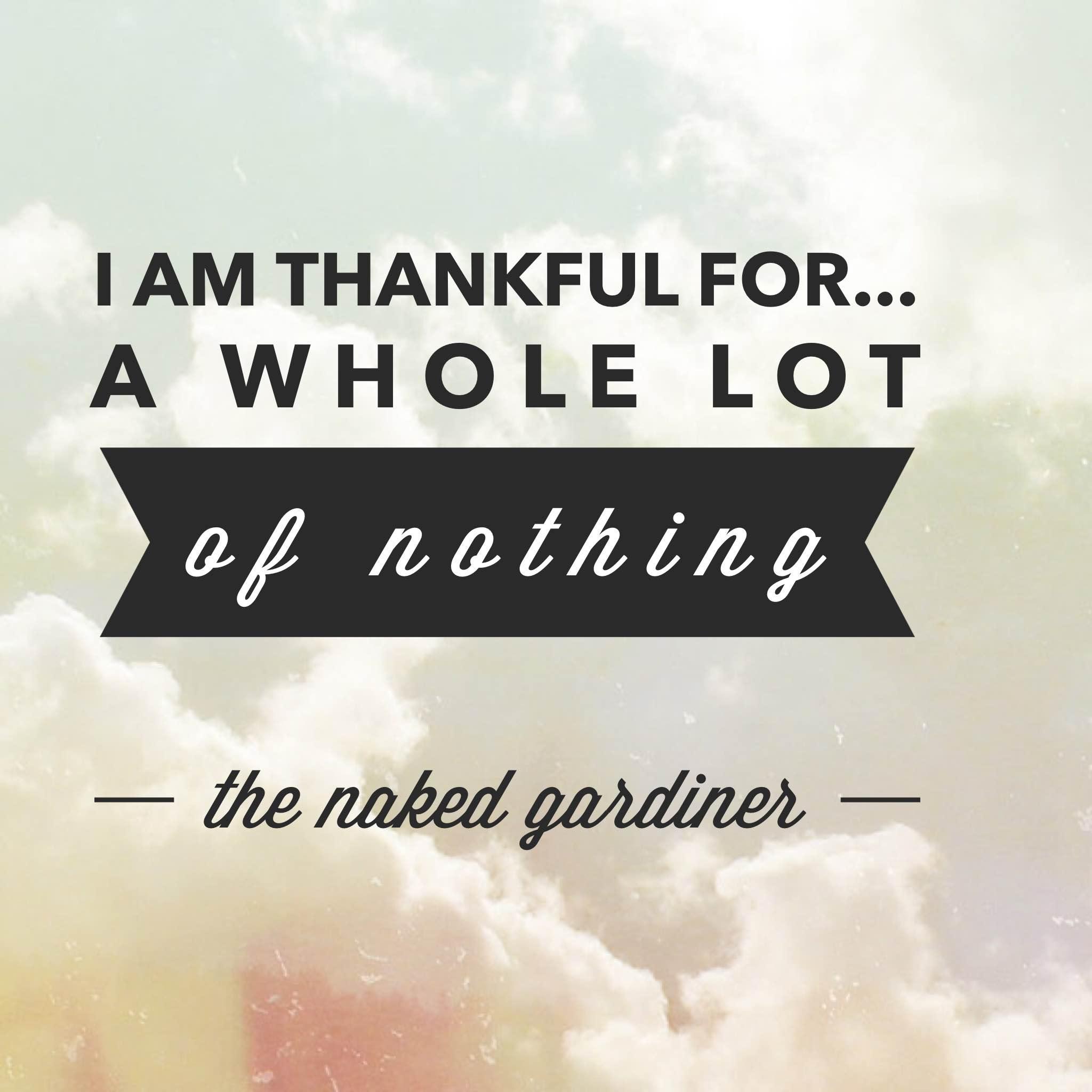 thankful-thursdays-a-whole-lot-of-nothing-thenakedgardiner