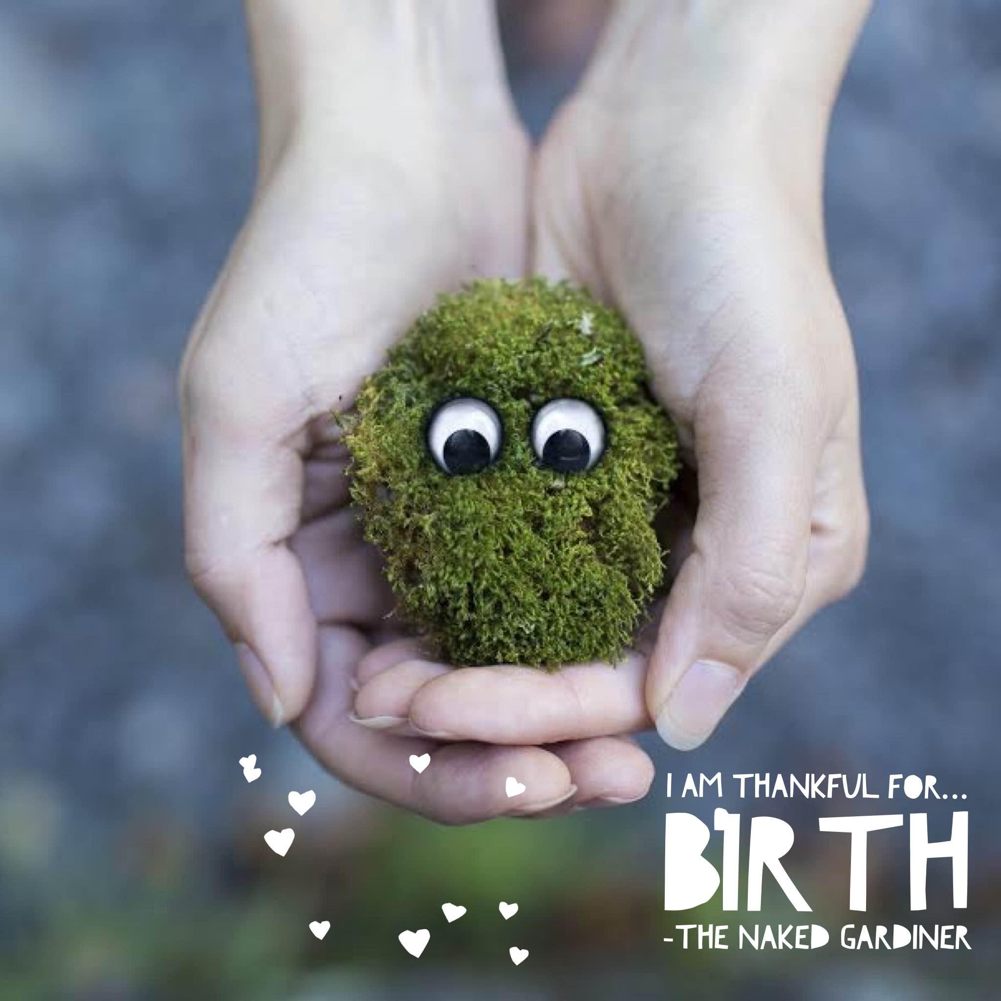 thankful-thursdays-birth-thenakedgardiner-ryanmcguire