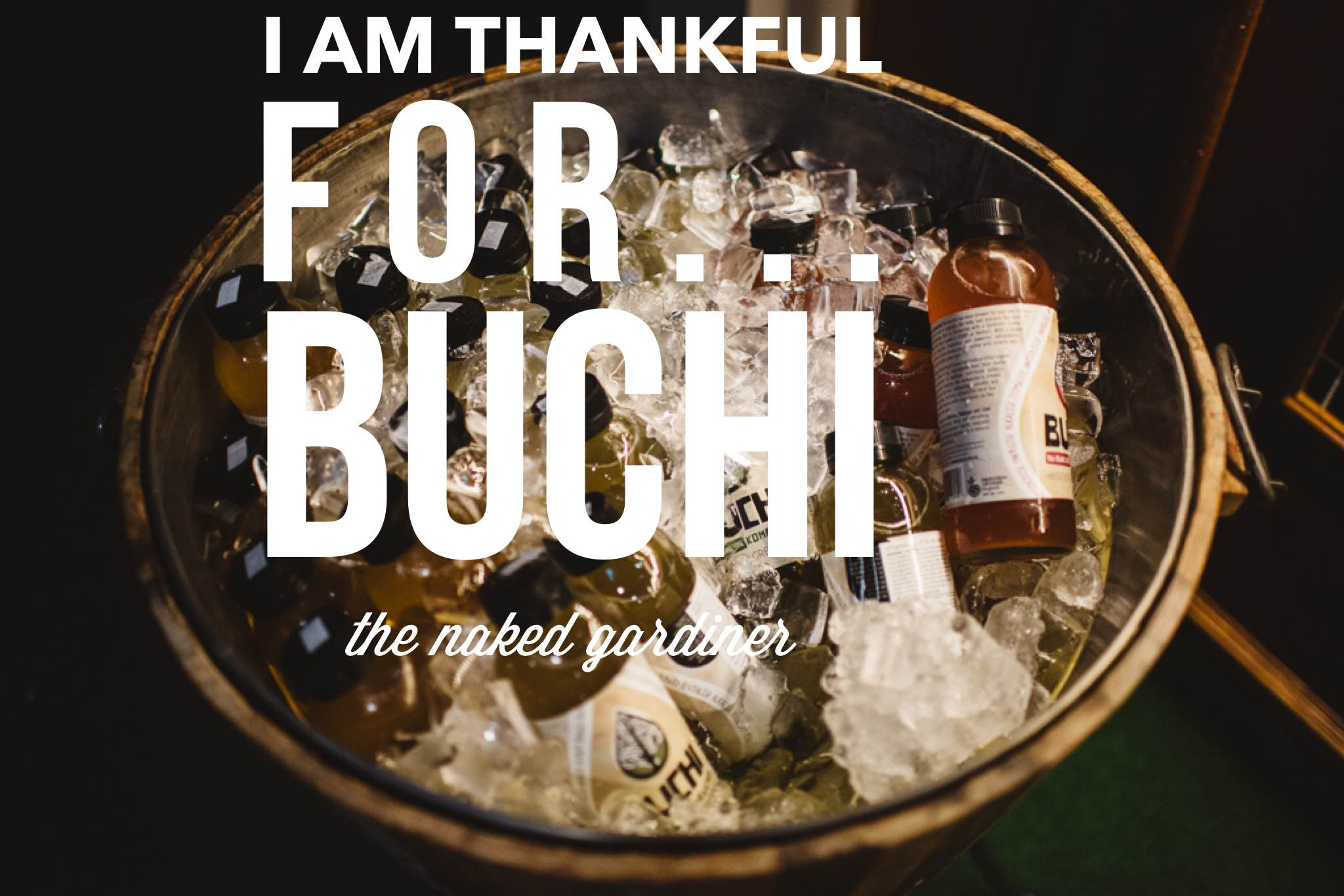 thankful-thursdays-buchi-thenakedgardiner