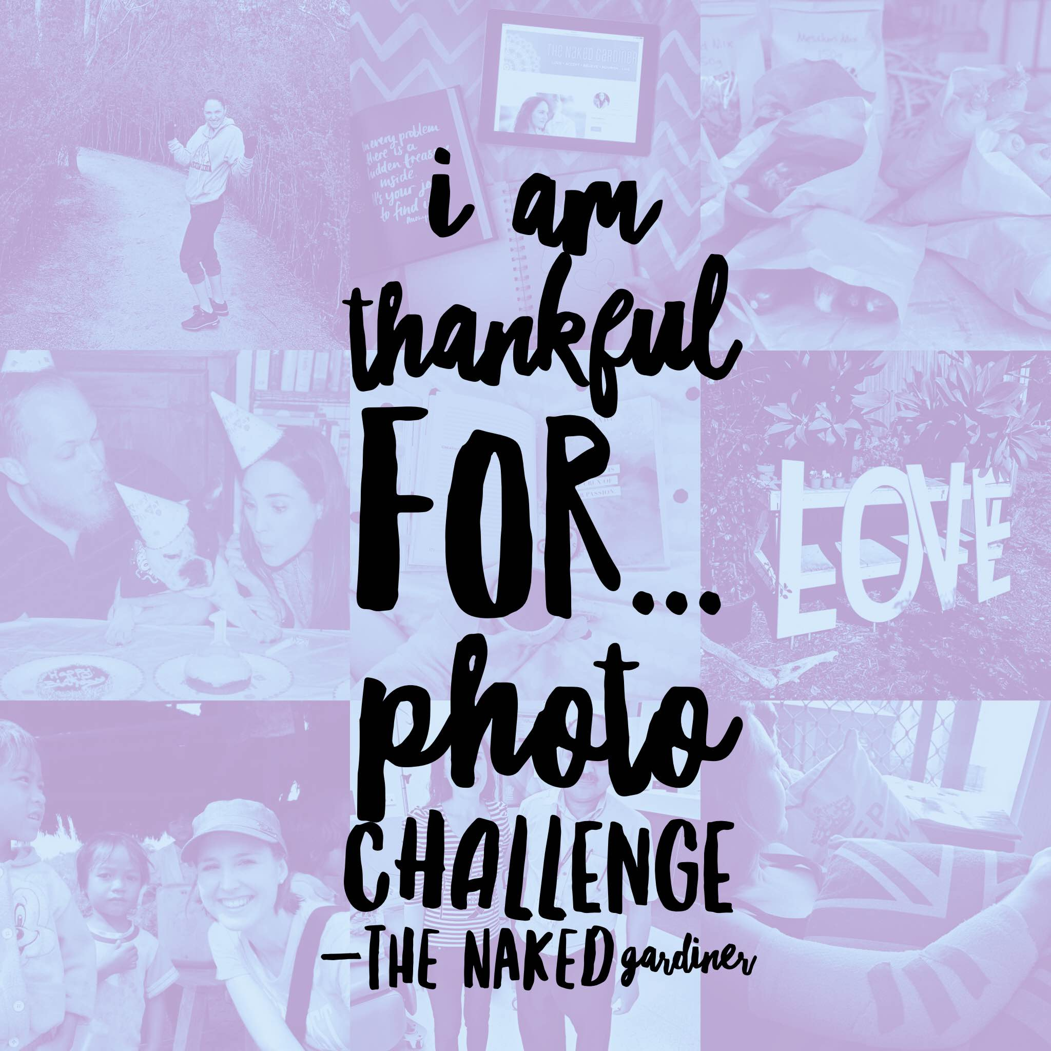 thankful-thursdays-photo-challenge-the-naked-gardiner