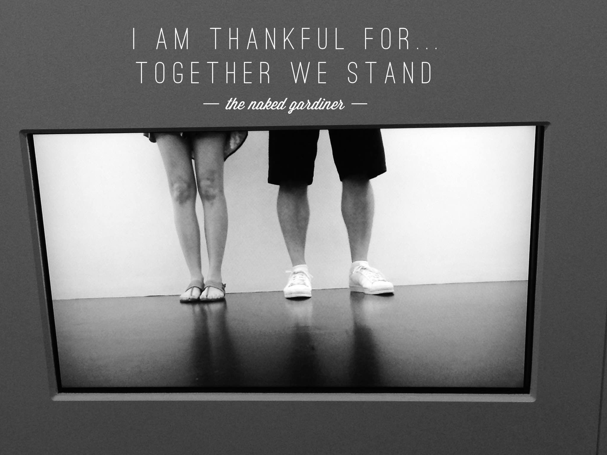 thankful-thursdays-together-we-stand-thenakedgardiner-kathygardiner
