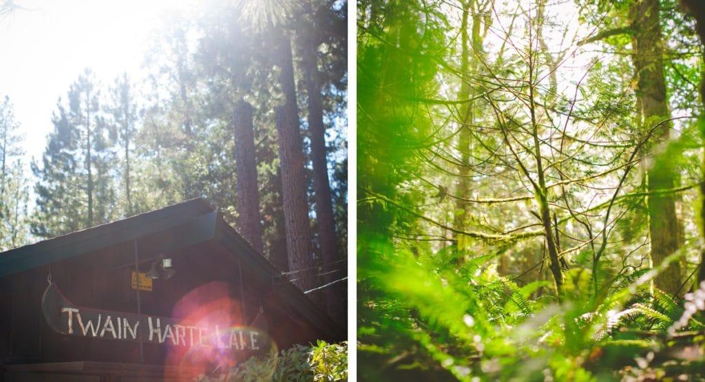 Twain Hart Lake cabin