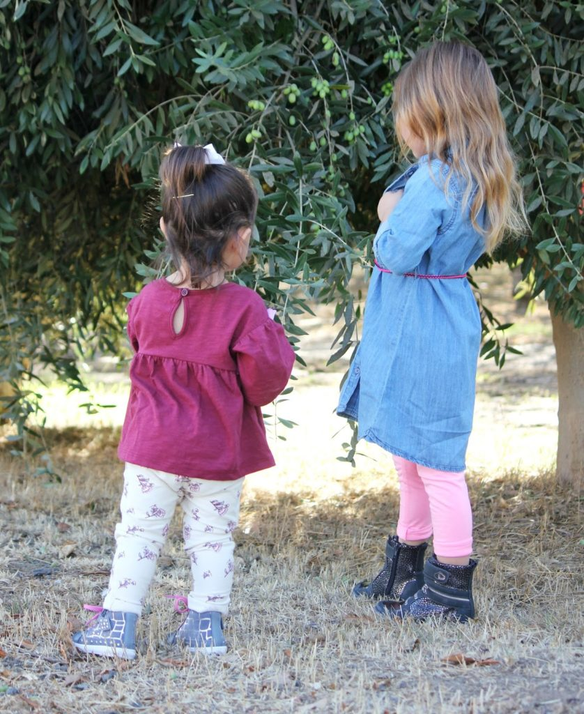 kids in an olive grove