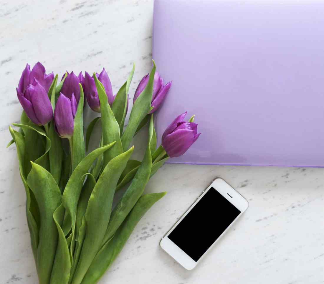 cell phone-tulips-laptop