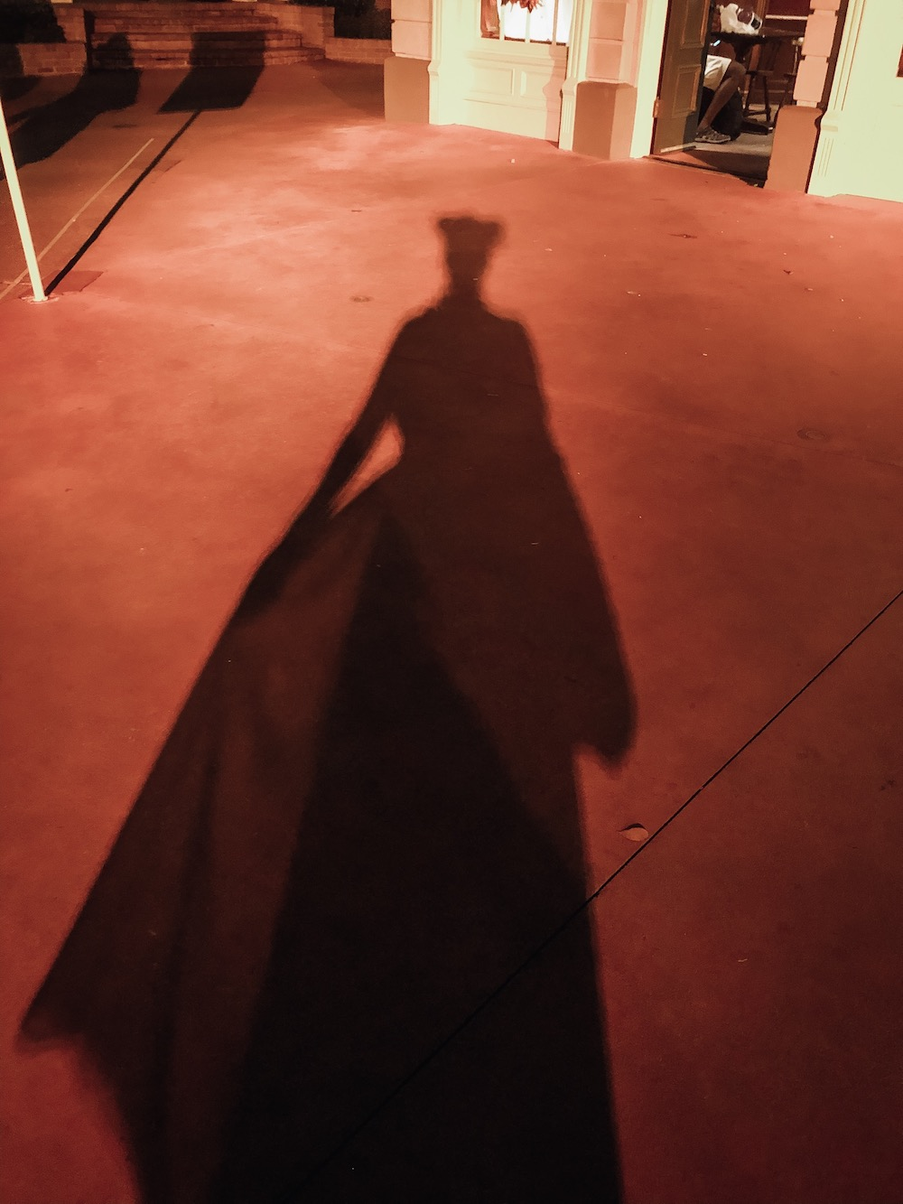 Maleficent Shadow at Disney World