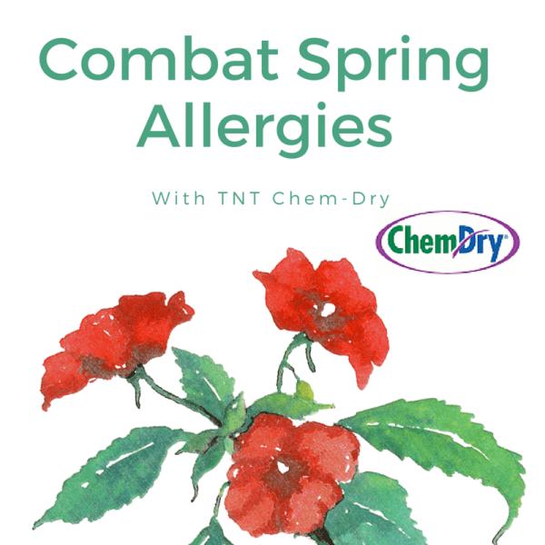 Combat Allergies with TNT Chem-Dry