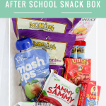 After School Snack Box