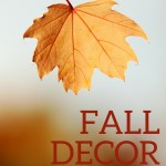 Fall Decor From the Outside In