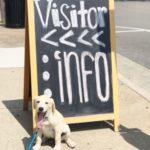 Dog-Friendly Nashville
