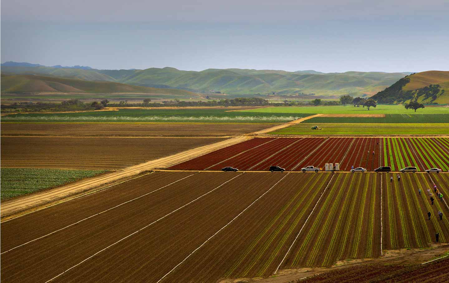 california_farm_cc_img