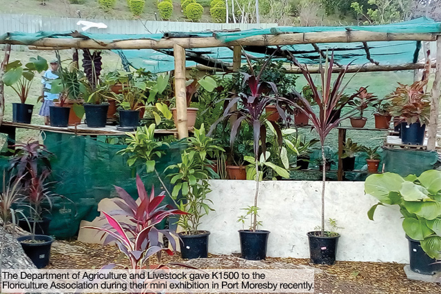 Floriculture women get K1500 to help with training
