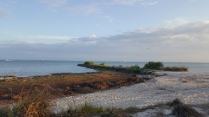 Shore Fishing Key West