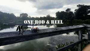 ONE ROD & REEL