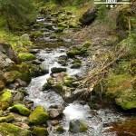 self guided hiking, Carpatian mountains, Poland, mountain river