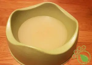Bone Broth for Dogs