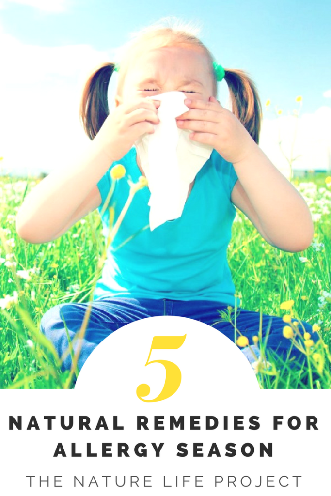 5 Natural Remedies for Allergy Season