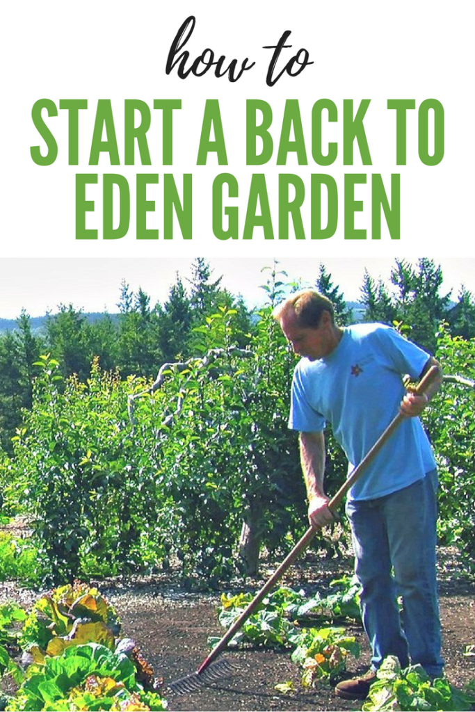 How to Start a Back to Eden Garden