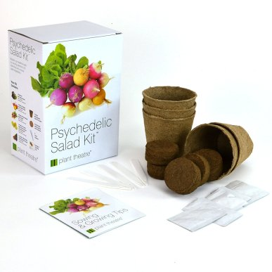 psychadelic salad kit