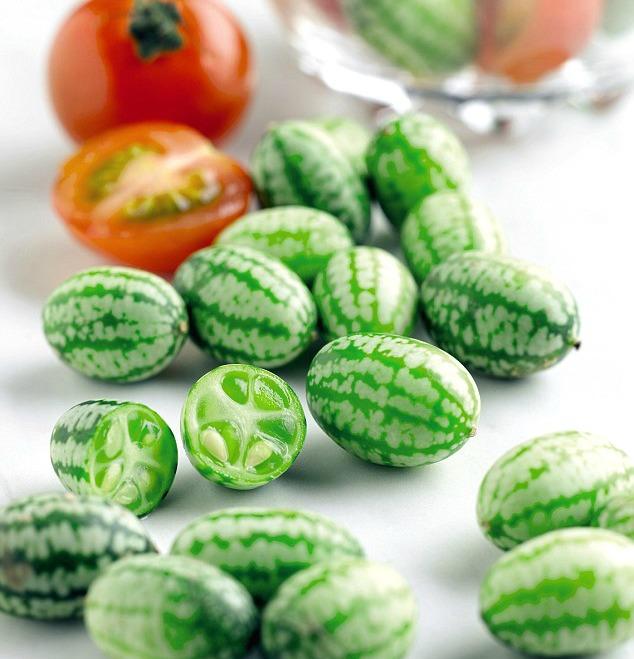 grow cucamelons in your garden