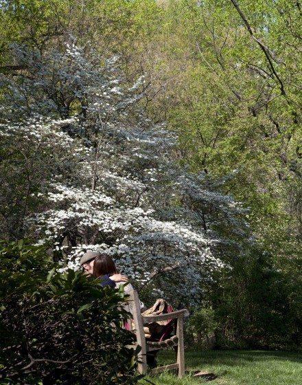 Dumbarton Oaks, Washington, D.C.(WEB)