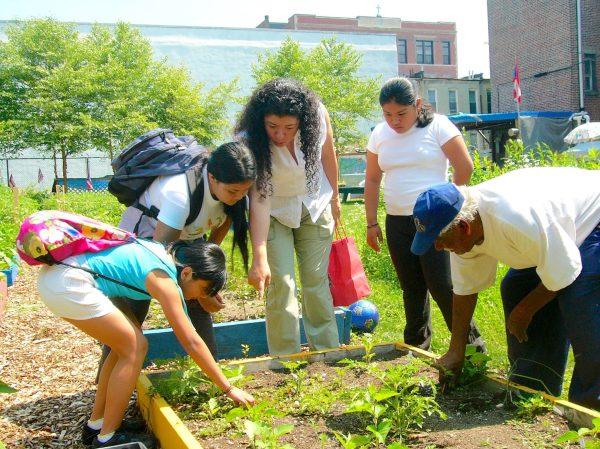 Intergenerational Urban Environmental Education