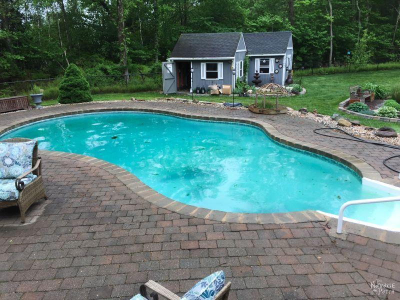 Pool Blues (and Greens) - The Navage Yaps | Pool Life | Pool Ownership | Dirty Pool | TheNavagePatch.com